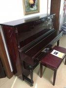 钢琴(诺的斯卡)