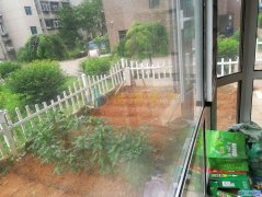 华宸一期 南北通厅 一楼带花园!